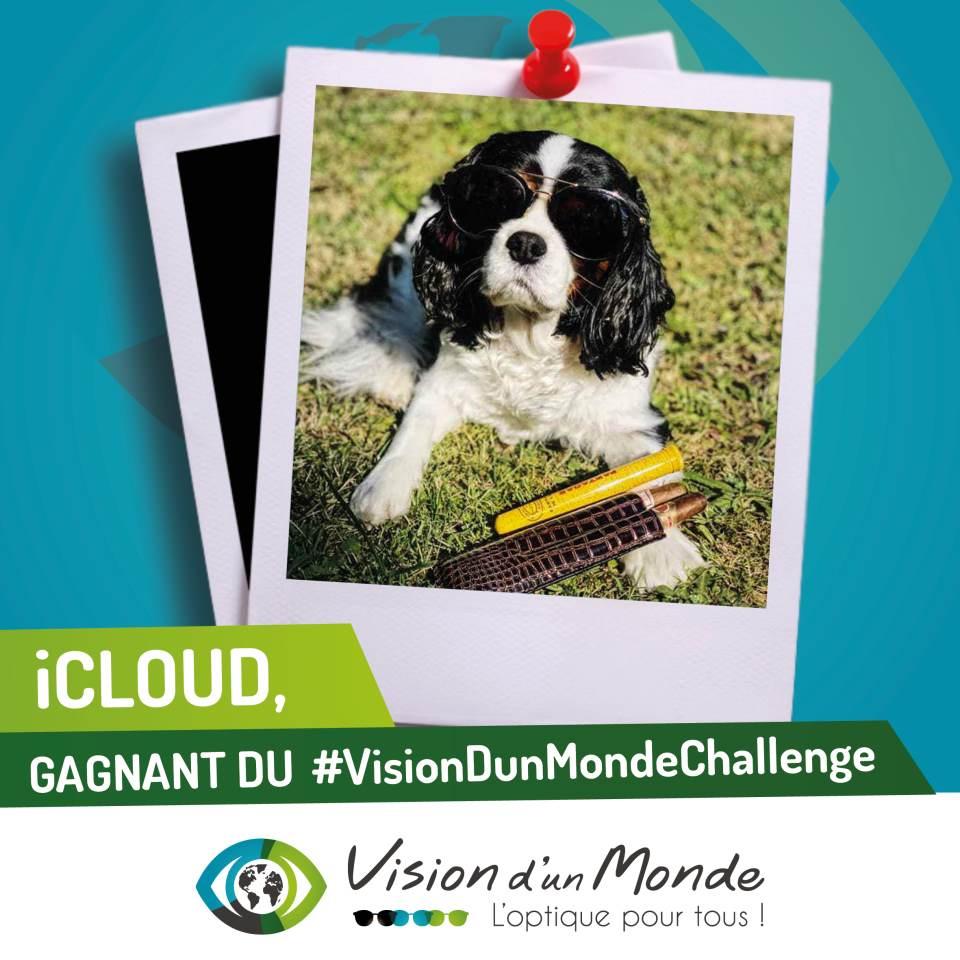GAGNANT CHALLENGE VDM