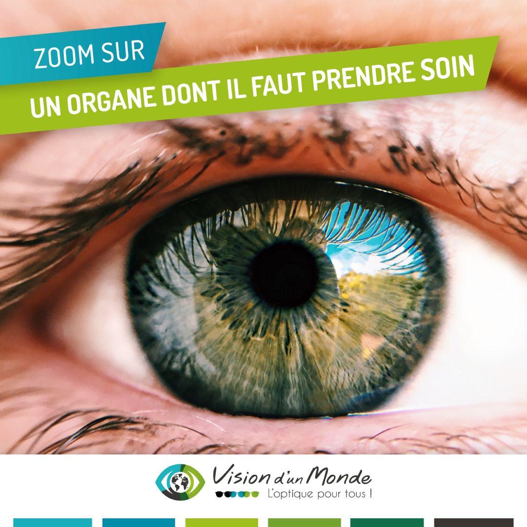 organe oeil soin
